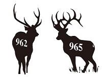 962黒鹿画像(200).jpg
